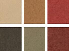 Bruno colour palette